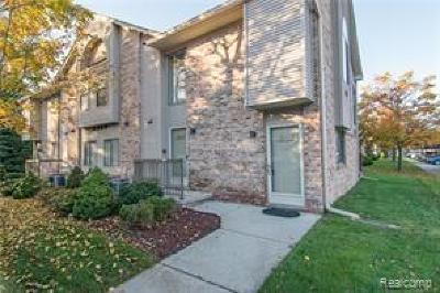 Salem, Salem Twp, Canton, Canton Twp, Plymouth, Plymouth Twp Rental For Rent: 42799 Lilley Pointe Drive #137