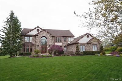 Canton, Canton Twp Single Family Home For Sale: 7483 Briargate Court