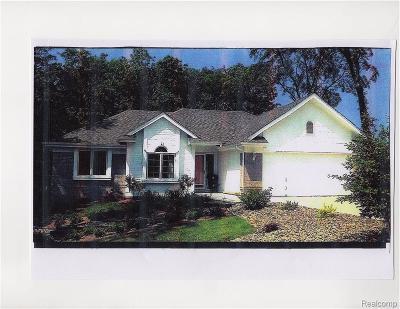 Brandon Twp, Ortonville, Ortonville Vlg Single Family Home For Sale: Kathy Lynn Ln