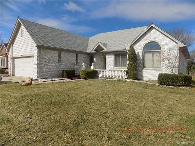 Macomb Twp Single Family Home For Sale: 55115 Pacific Ridge Drive