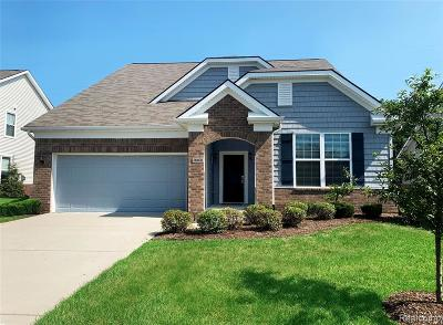 Brownstown, Brownstown Twp Single Family Home For Sale: 26400 Higgins Way