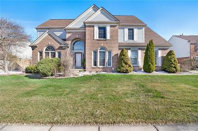 Canton, Canton Twp Single Family Home For Sale: 46970 Eastbourne Road