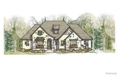 Novi Single Family Home For Sale: 47738 Dunhill Court