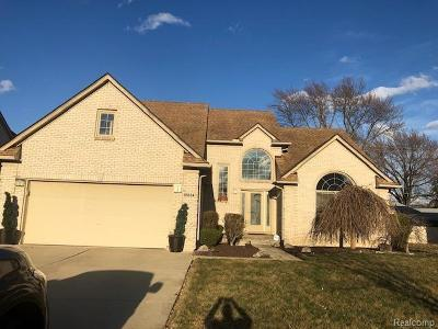 Livonia Single Family Home For Sale: 18834 Amber Court