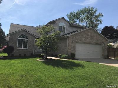 Livonia Single Family Home For Sale: 11855 Alois Street