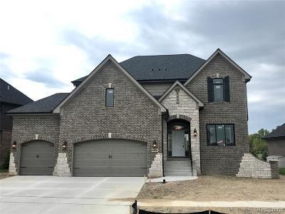 Washington Twp Single Family Home For Sale: 60881 Stonecrest Drive