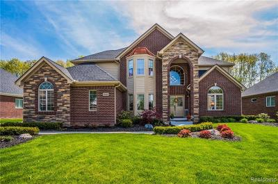 South Lyon Single Family Home Contingent - Continue To Show: 23624 Millwood