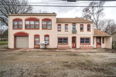 Shelby Twp Single Family Home For Sale: 2420 Dawes Avenue