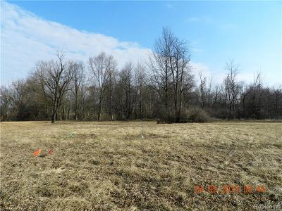 Residential Lots & Land For Sale: 350 Canfield Street