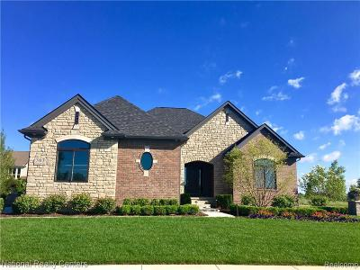 Oxford Single Family Home For Sale: 015 Overlook Drive