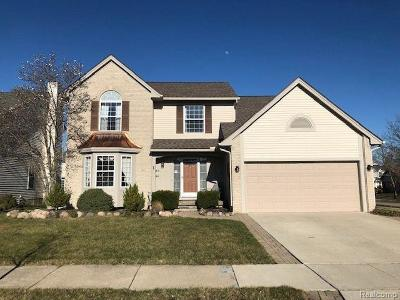 Canton, Canton Twp Single Family Home For Sale: 3405 Riverside Court