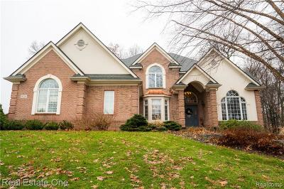 City Of The Vlg Of Clarkston, Clarkston, Independence, Independence Twp Single Family Home For Sale: 9226 Morning Mist Drive E