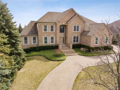 Oakland County, Wayne County Single Family Home For Sale: 45415 Tournament Drive
