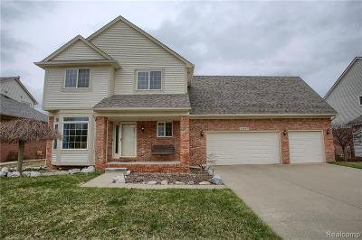 Macomb Twp Single Family Home For Sale: 22267 John Deere Lane