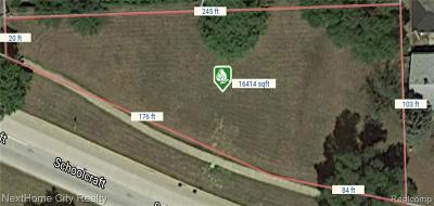 Livonia Residential Lots & Land For Sale: 37844 Schoolcraft Road