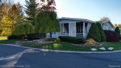 Rochester, Rochester Hills Single Family Home For Sale: 616 Mallard