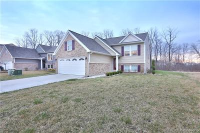Superior Twp, Ypsilanti, Ypsilanti Twp Single Family Home For Sale: 9382 Country View Drive