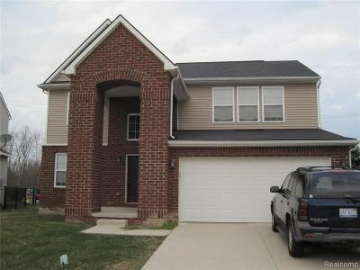 Clinton Twp Single Family Home For Sale: 20595 Starina Drive