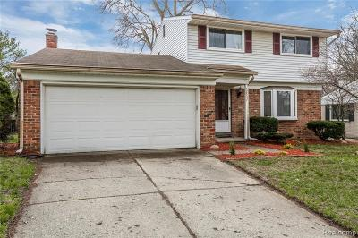 Salem, Salem Twp, Plymouth, Plymouth Twp Single Family Home For Sale: 42533 Postiff Avenue
