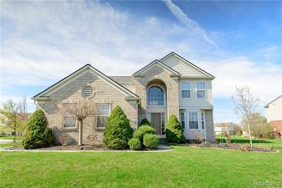 Canton, Canton Twp Single Family Home For Sale: 4014 Hopefield Court