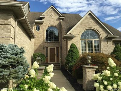Northville Single Family Home For Sale: 44230 Deep Hollow Circle