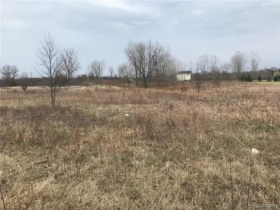 Residential Lots & Land For Sale: 5036 Capac Road