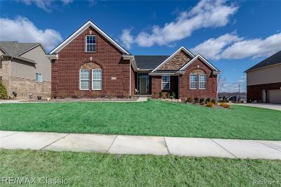 Lyon Twp MI Single Family Home For Sale: $539,900