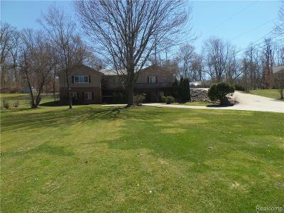 Lake Orion Single Family Home For Sale: 490 Grampian Avenue