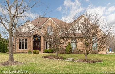 Plymouth Single Family Home For Sale: 46522 Southview Ln