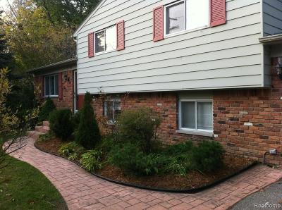 West Bloomfield Twp Single Family Home For Sale: 7710 Willow Road