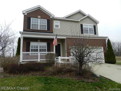 Oakland County Single Family Home For Sale: 3834 Rolling Hills Drive