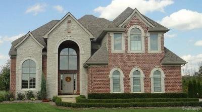 South Lyon MI Single Family Home For Sale: $529,900