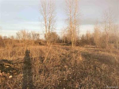 Armada Twp Residential Lots & Land For Sale: 73121 Omo Rd