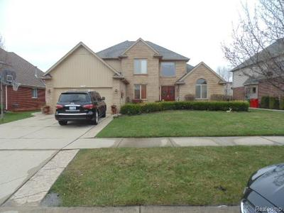 Macomb Twp Single Family Home For Sale: 21334 Clayton Drive