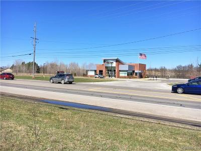 Commercial Lots & Land For Sale: Ortonville Road