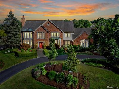 Bloomfield Twp Single Family Home For Sale: 1249 Water Cliff Drive