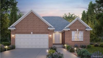 Livonia Single Family Home For Sale: 37228 Elia Street