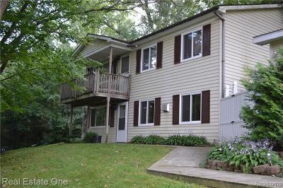 Brandon Twp, Ortonville, Ortonville Vlg Single Family Home For Sale: 2058 Circle Drive