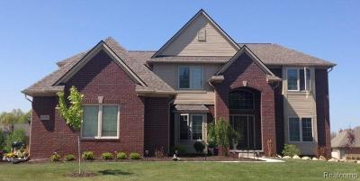 Commerce Twp Single Family Home For Sale: 2624 Chisana Drive