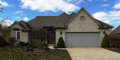 Commerce Twp Single Family Home For Sale: 2673 Chisana Drive