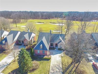 Clarkston, Independence Twp, Springfield Twp, Village Of Clarkston  Condo/Townhouse For Sale: 4620 Oakhurst Ridge Road