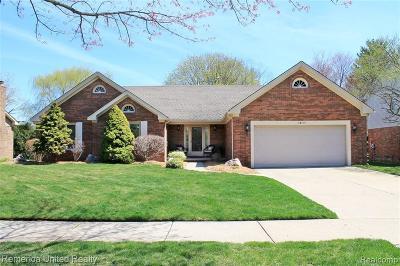 Livonia Single Family Home For Sale: 34530 Saint Martins Street