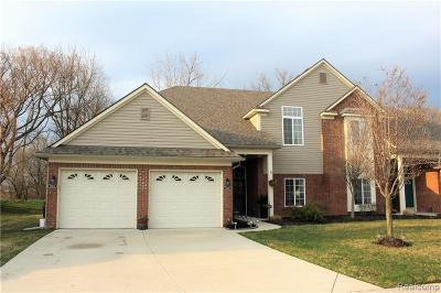 Sterling Heights Condo/Townhouse For Sale: 14414 Shadywood Drive