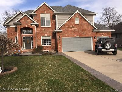 Chesterfield Twp Single Family Home For Sale: 50348 Rose Marie Dr