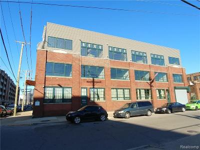 Detroit Condo/Townhouse For Sale: 2987 Franklin Street #PH