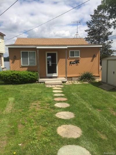Livingston County Single Family Home For Sale: 8739 Lagoon Drive