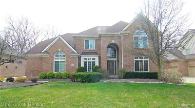 Farmington Hills Single Family Home For Sale: 22085 Lujon Drive