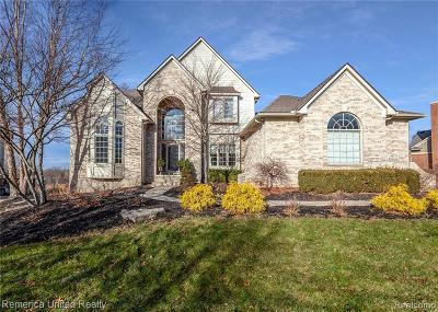 Commerce Twp Single Family Home For Sale: 2313 Ivy Hill Drive