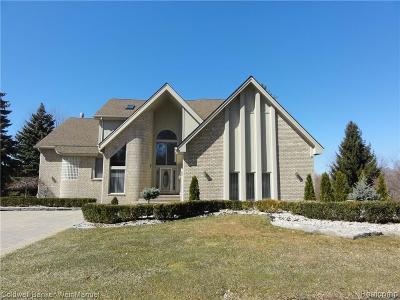 Farmington Hills Condo/Townhouse For Sale: 28042 Hickory Circle #10