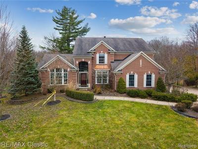 Canton, Canton Twp Single Family Home For Sale: 8165 Endicott Lane